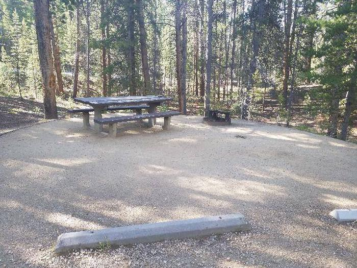 Molly Brown Campground, site 44 picnic table and fire ring