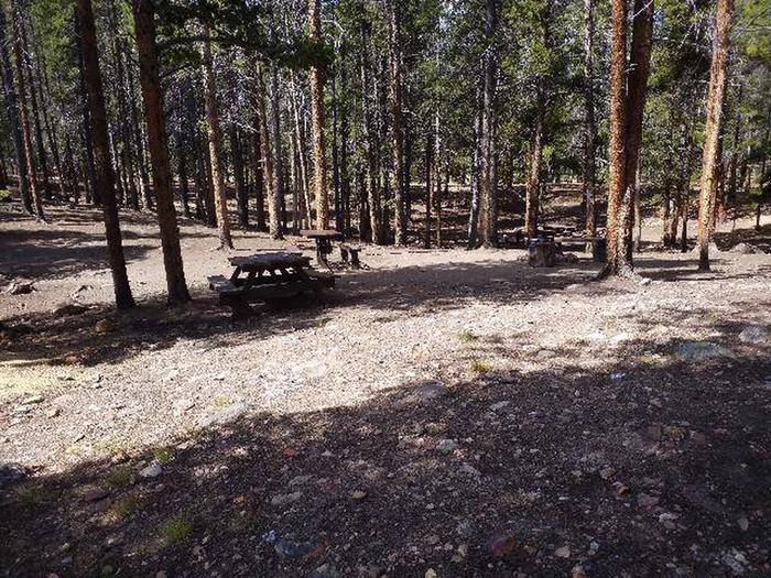 Printer Boy Group Campground, Site 1