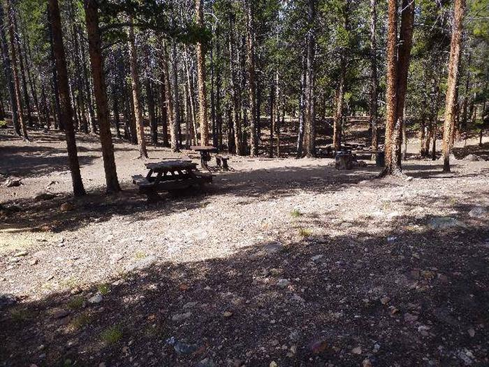 Printer Boy Group Campground, Site 1 picnic tables