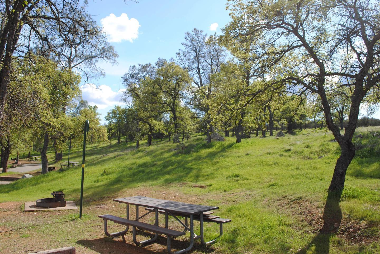 Acorn Campground Site 108 campSlip
