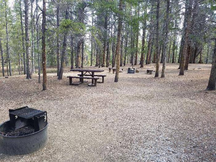 Printer Boy Group Campground, Site 3 picnic table and fire rings