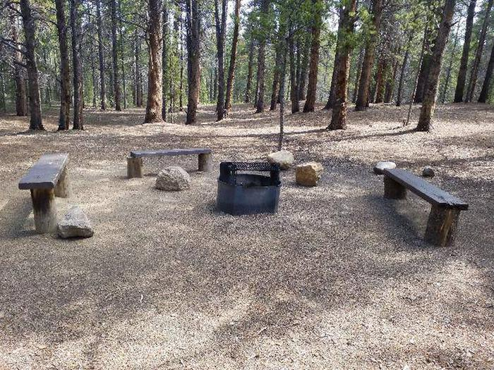 Printer Boy Group Campground, Site 3 benches and fire rings
