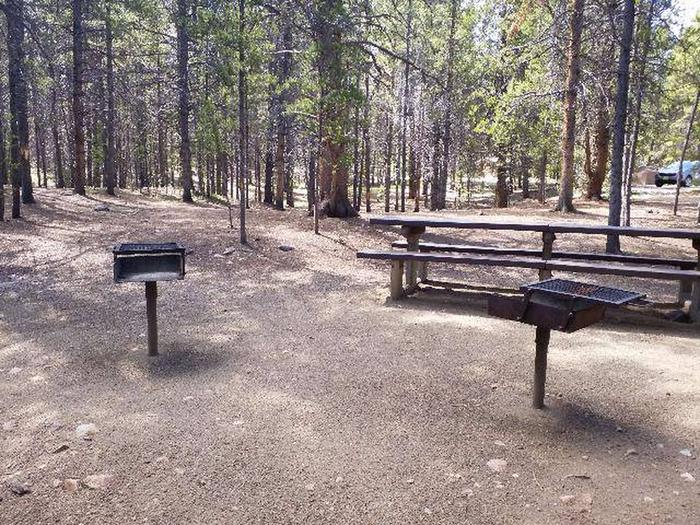 Printer Boy Group Campground, Site 3 picnic table and grills