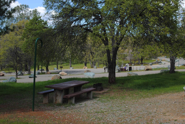 Acorn Campground Site 111 campSlip