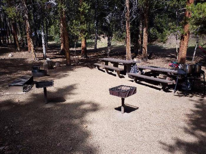 Printer Boy Group Campground, Site 4 picnic tables and fire grills