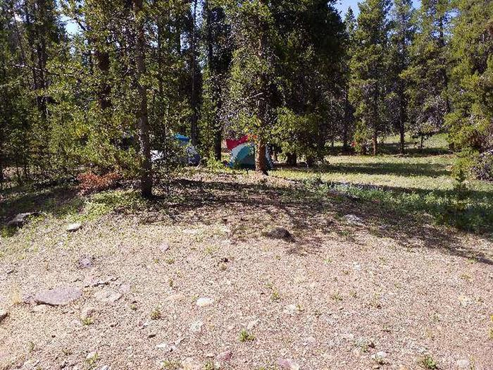 Printer Boy Group Campground, Site 4 Clearing 3