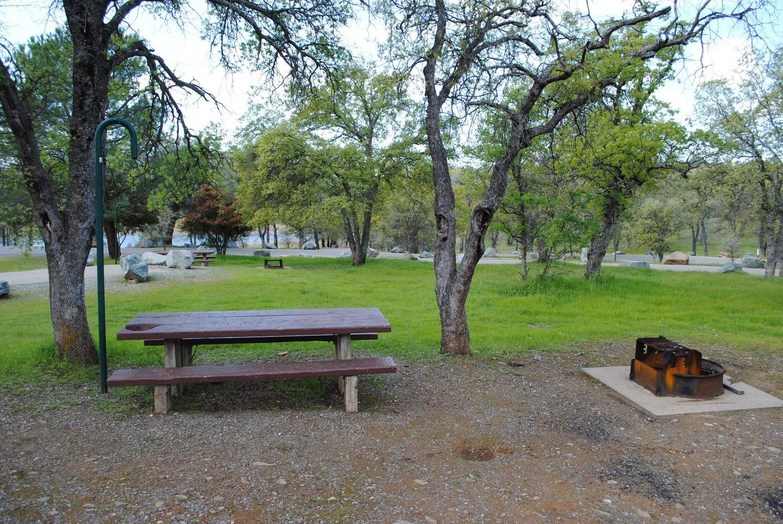 Acorn Campground Site 113 campSlip