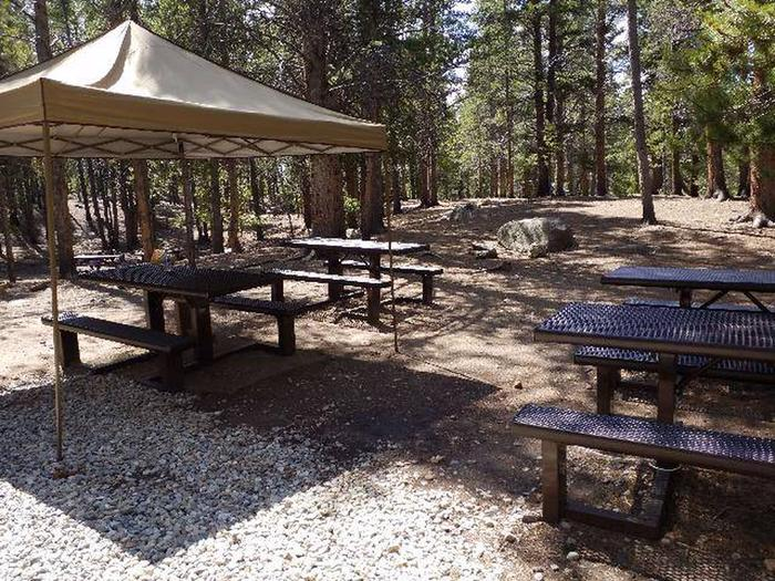 Printer Boy Group Campground picnic tables