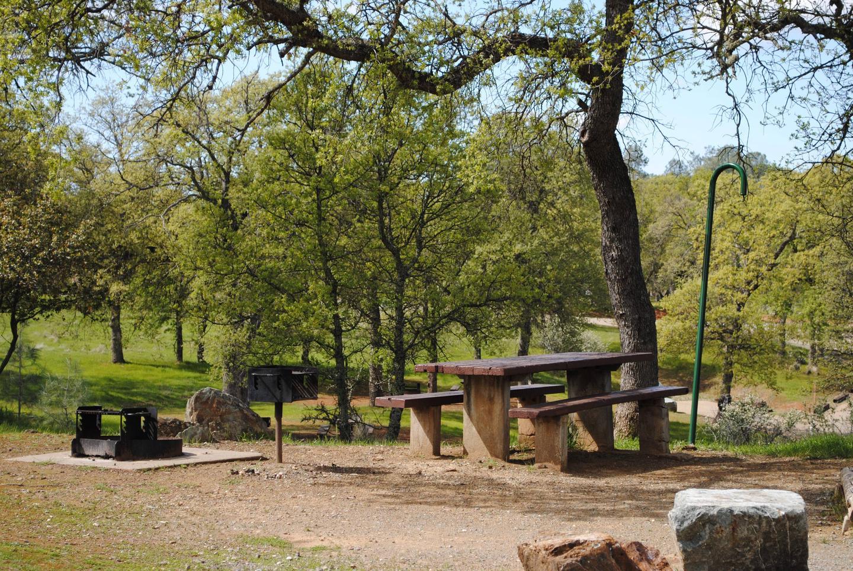 Acorn Campground Site 119 campSlip