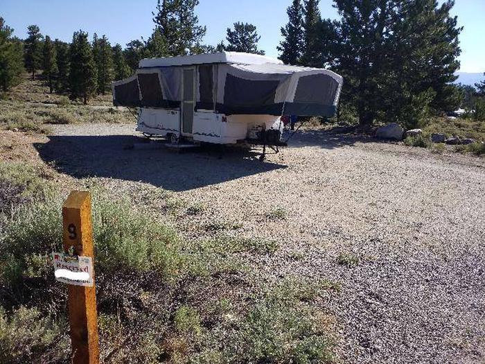 White Star Campground, site 9 markerWhite Star Campground, site 9 marking