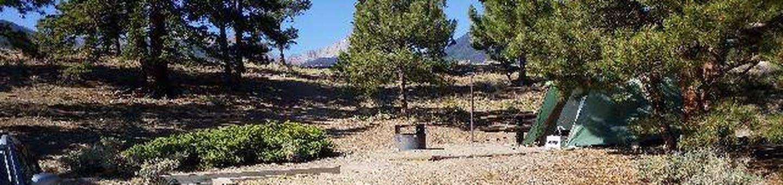 White Star Campground, site 14