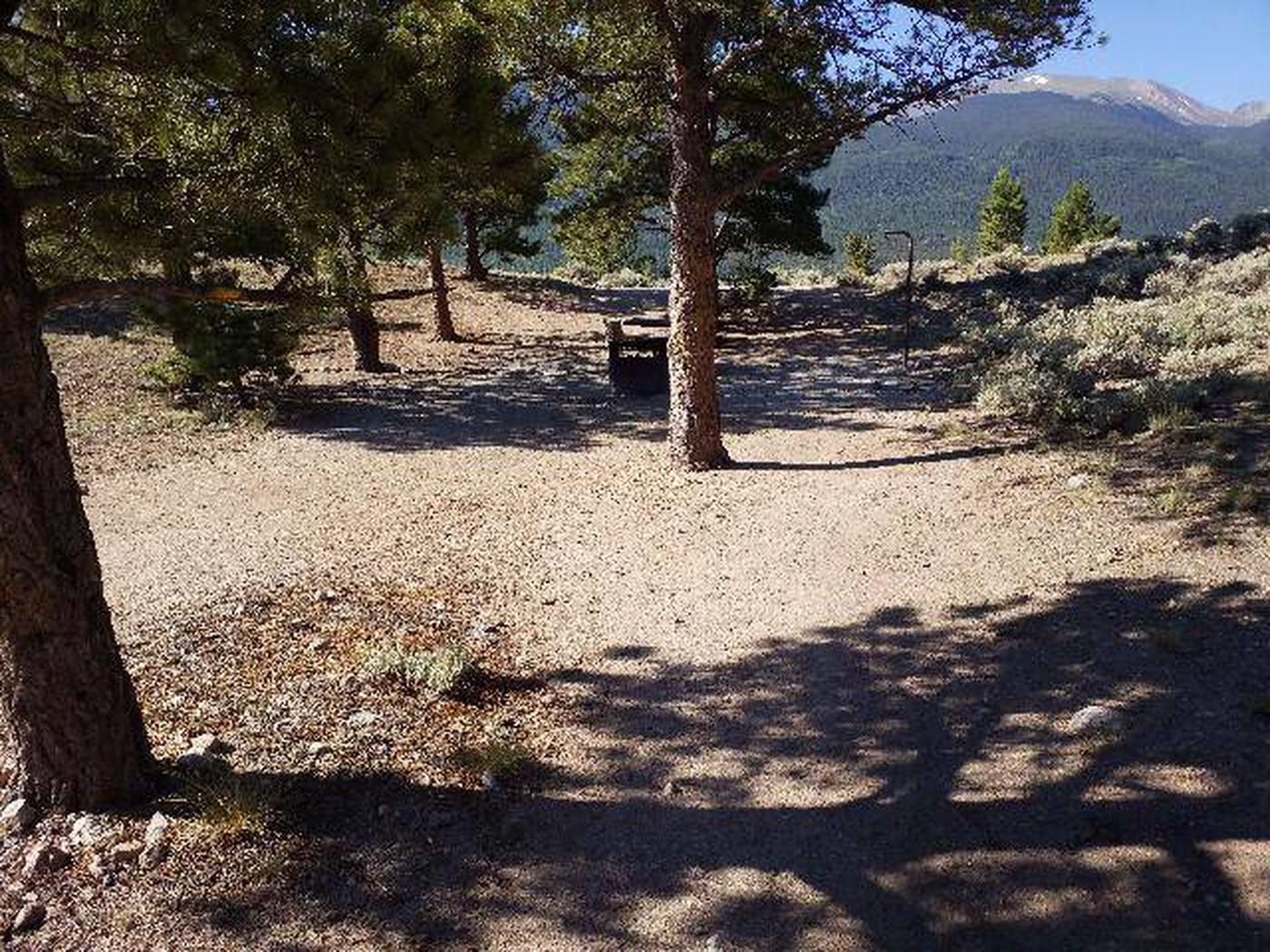 White Star Campground, site 16 pathway