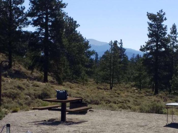 White Star Campground, site 21