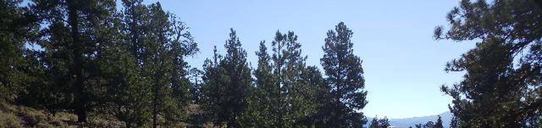 White Star Campground, site 27