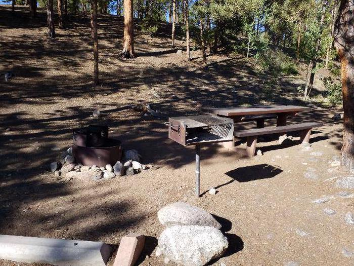 White Star Campground, site 48 picnic table, fire ring, and grill