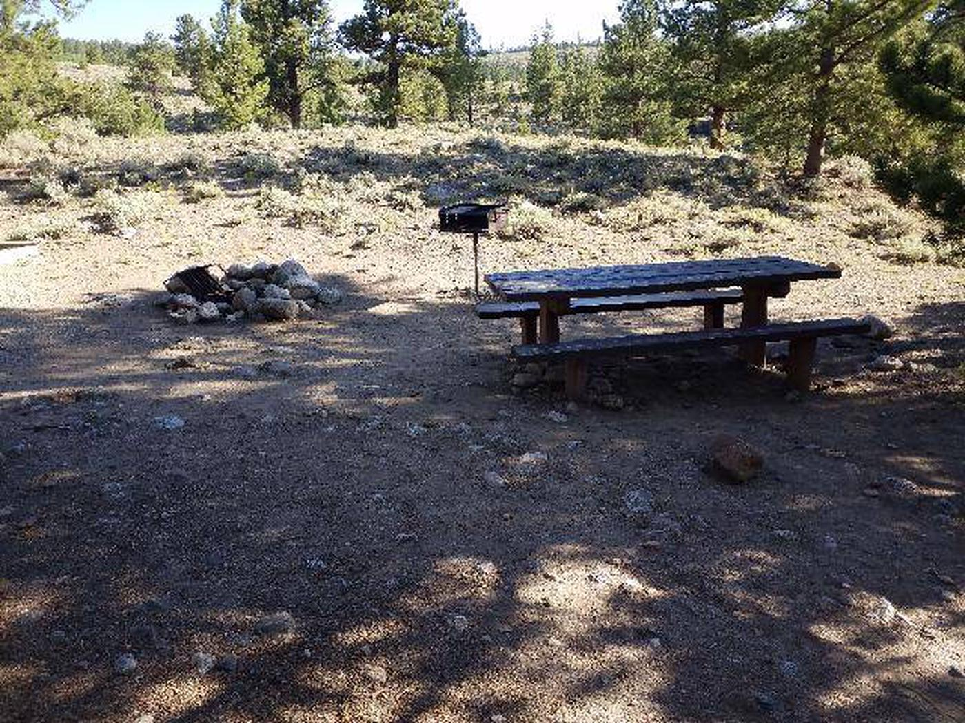 White Star Campground, site 49 picnic table, fire ring, and grill