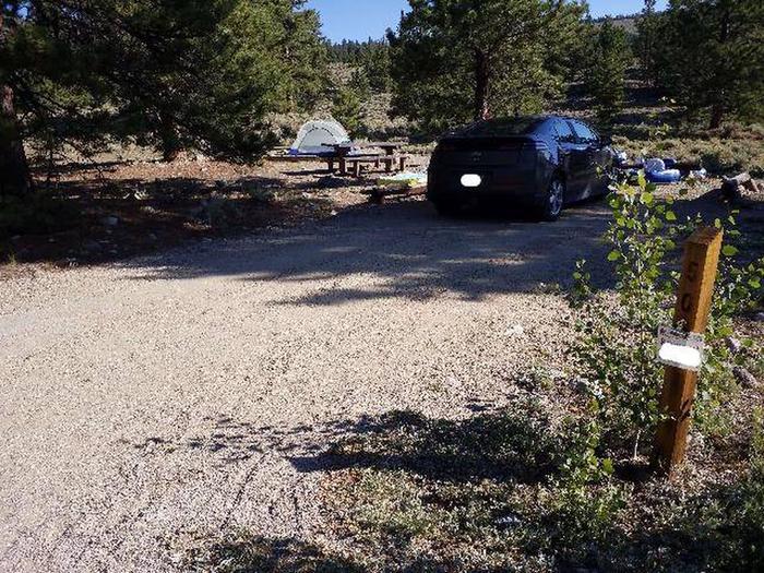 White Star Campground, site 50 marker