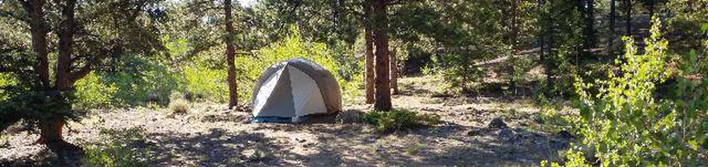 White Star Campground, site 51