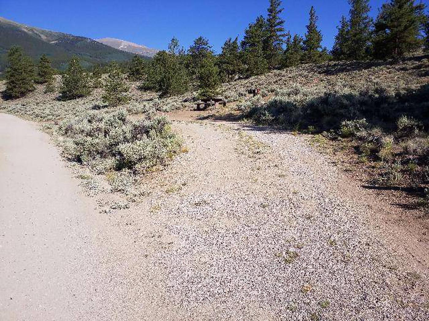 White Star Campground, site 56 pull-through parking
