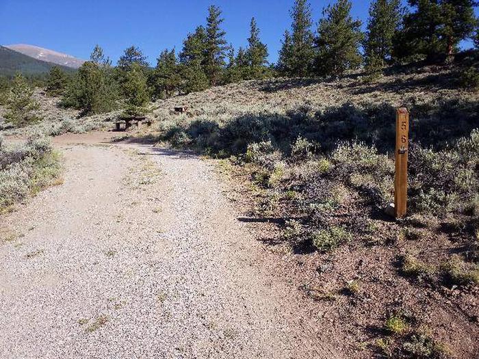 White Star Campground, site 56 marker