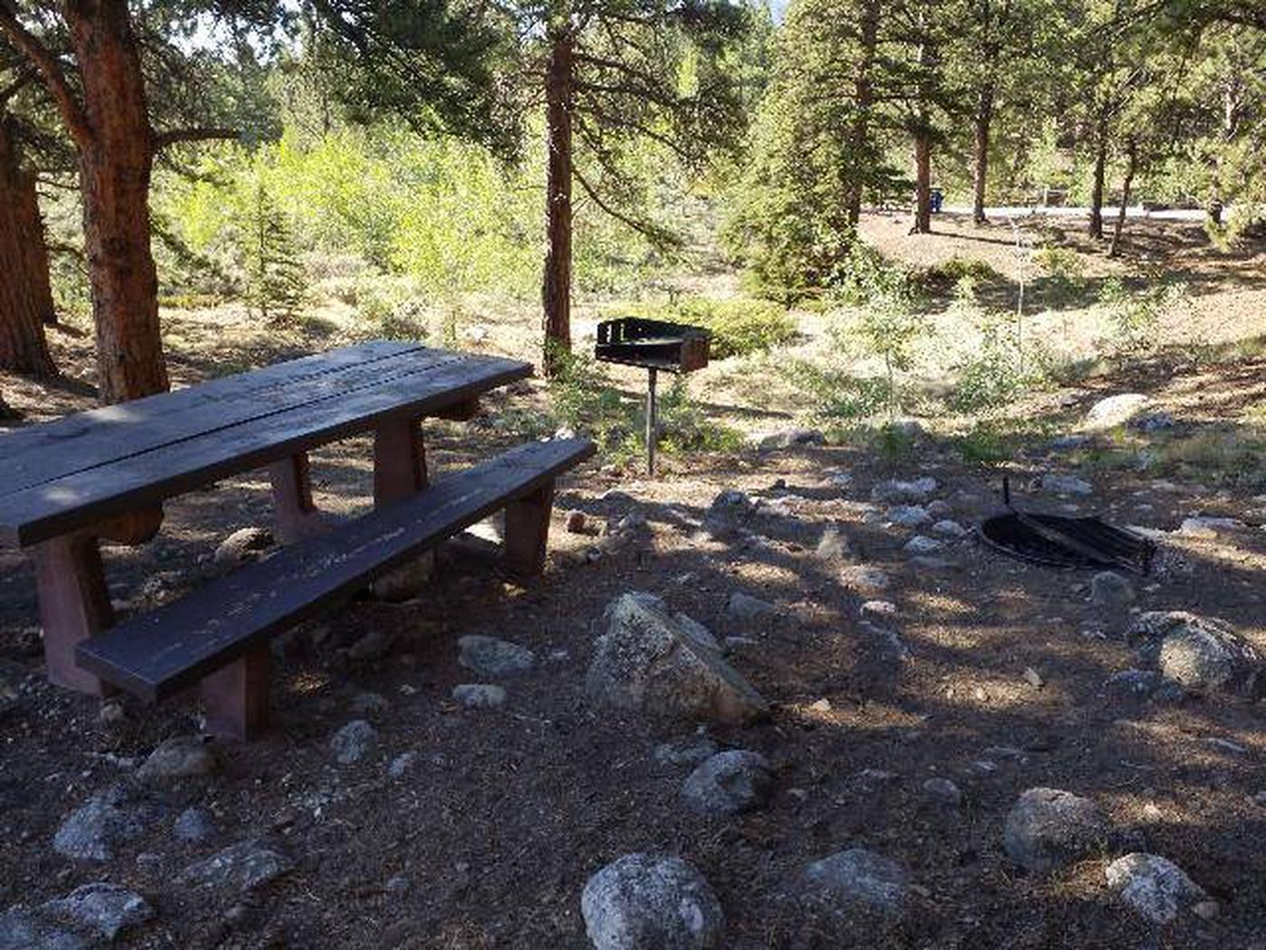 White Star Campground, site 60 picnic table, fire ring, and grill