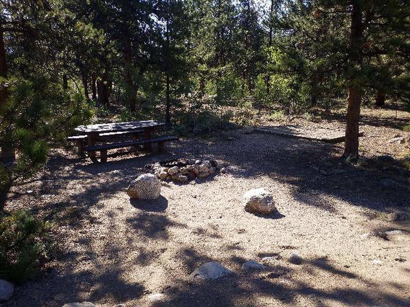 White Star Campground, site 62 picnic table and fire ring