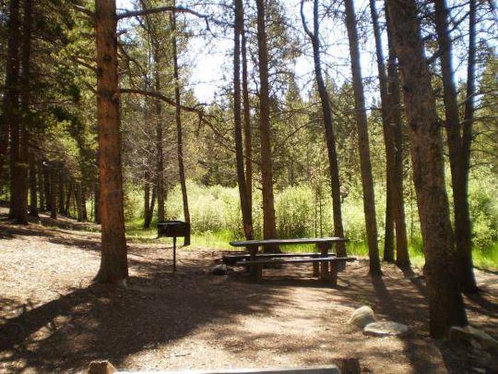 Silver Dollar Campground site 2