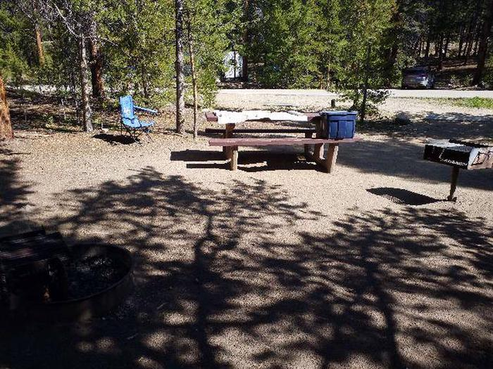 Father Dyer Campground, site 2 picnic table and fire grill