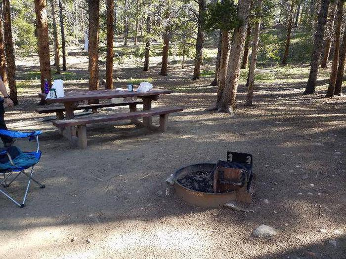 Father Dyer Campground, site 6 picnic table and fire ring