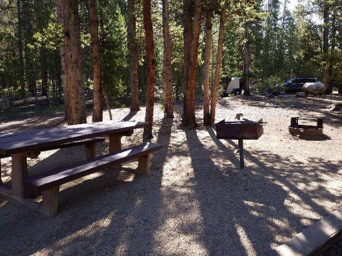 Father Dyer Campground, site 8 picnic table, fire ring, and grill