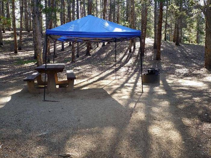 Father Dyer Campground, site 10 picnic table and fire ring