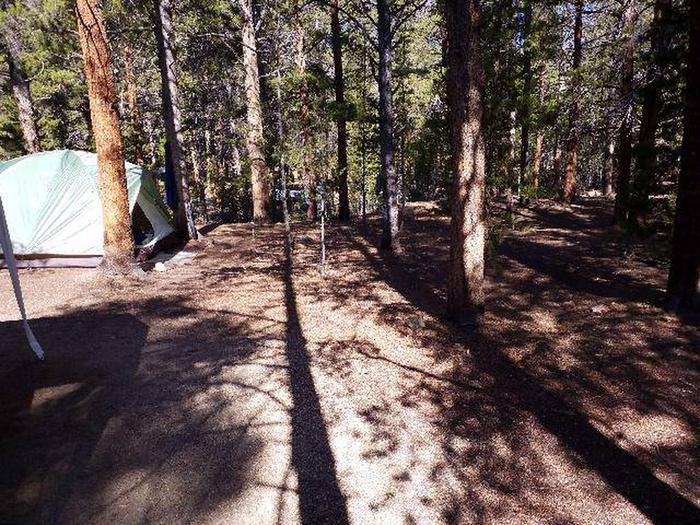 Father Dyer Campground, site 11
