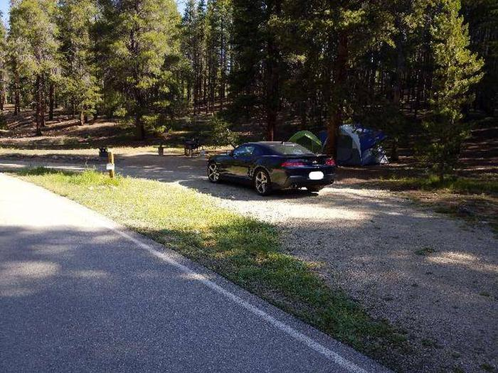 Father Dyer Campground, site 12 parking