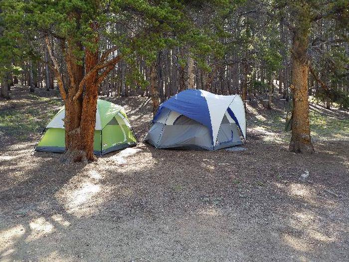 Father Dyer Campground, site 12 clearing
