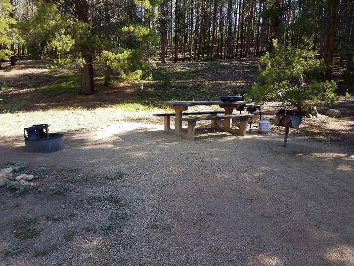 Father Dyer Campground, site 12 picnic table, fire ring, and grill