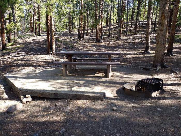 Father Dyer Campground, site 14 picnic table and fire ring