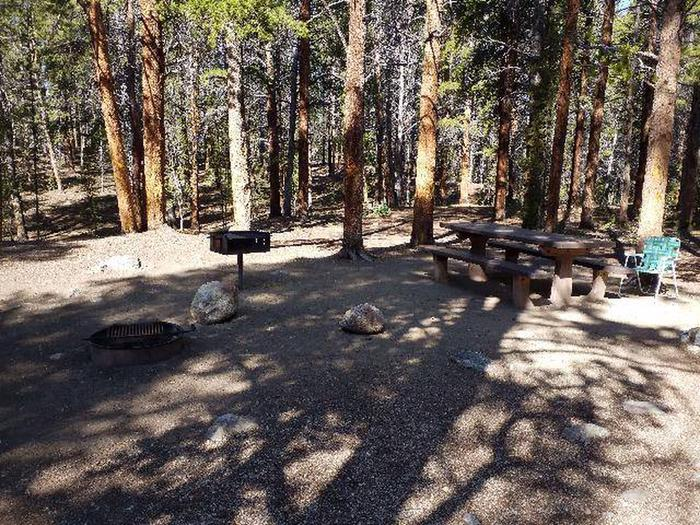 Father Dyer Campground, site 17 picnic table and fire grill