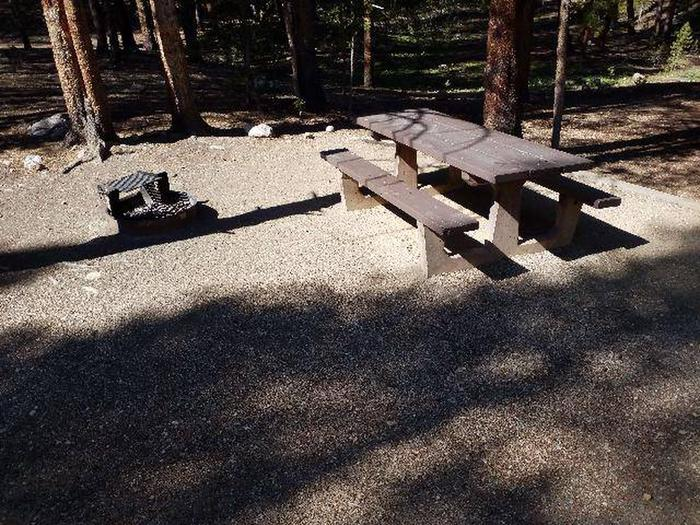 Father Dyer Campground, site 19 picnic table and fire ring