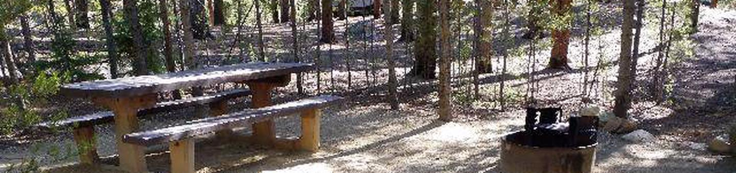 Father Dyer Campground, site 18