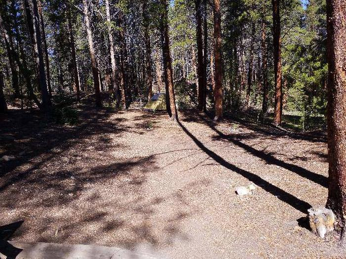 Father Dyer Campground, site 21 clearing