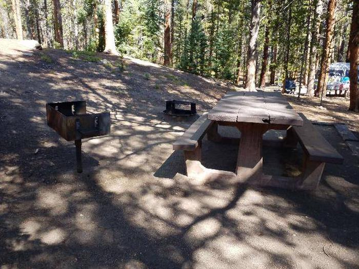 Father Dyer Campground, site 22 picnic table, fire ring, and grill