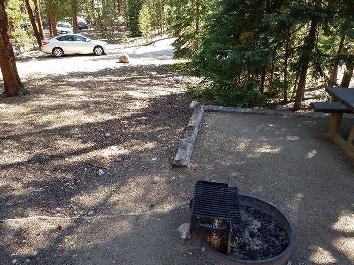 Father Dyer Campground, site 22 clearing