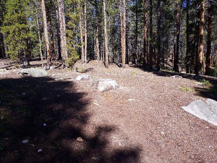 Father Dyer Campground, site 22 clearing 2