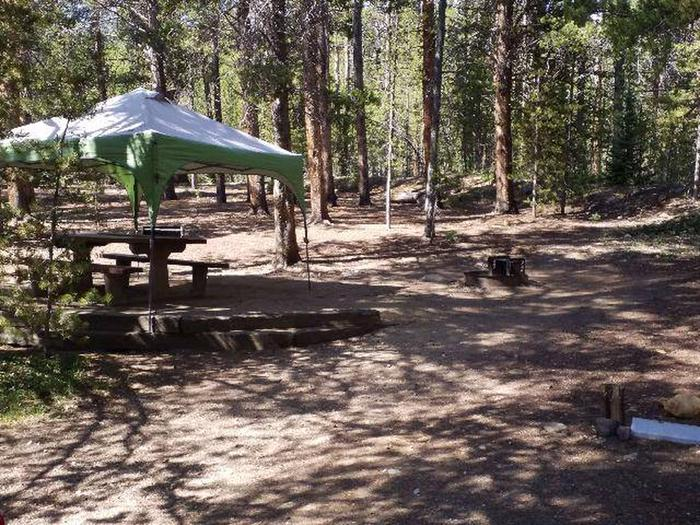 Father Dyer Campground, site 25 picnic table and fire ring