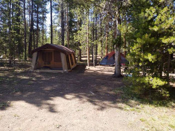 Father Dyer Campground, site 26 clearing