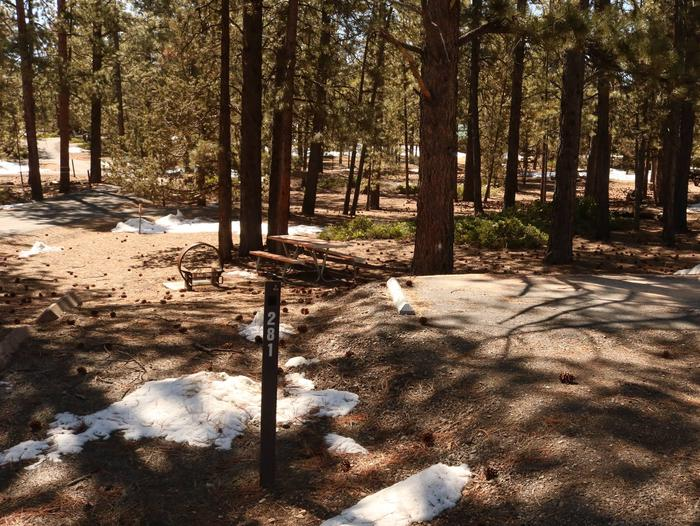 Sunset Campground Site 281site 281
