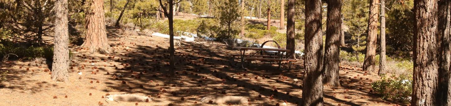 Sunset Campground Site 283site 283