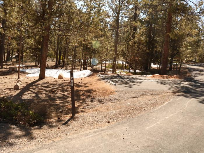 Sunset Campground Site 286site 286