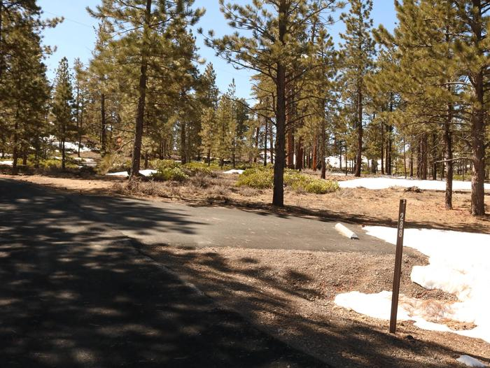 Sunset Campground Site 288site 288