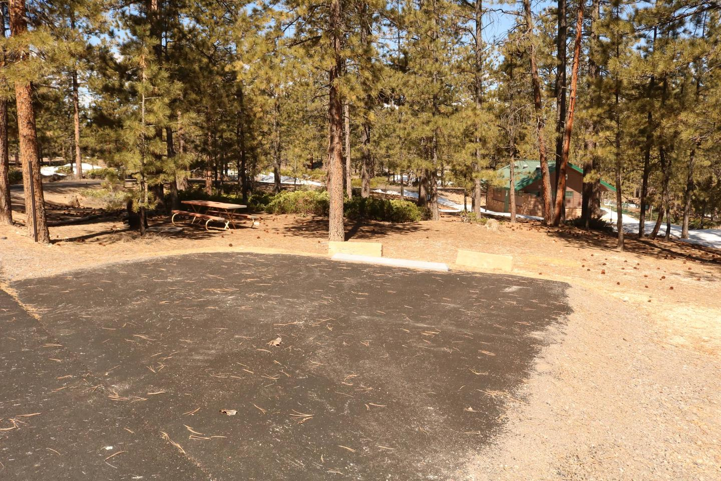 Sunset Campground Site 293site 293